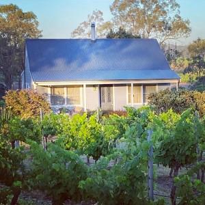 Cabernet Cottage amongst the vines